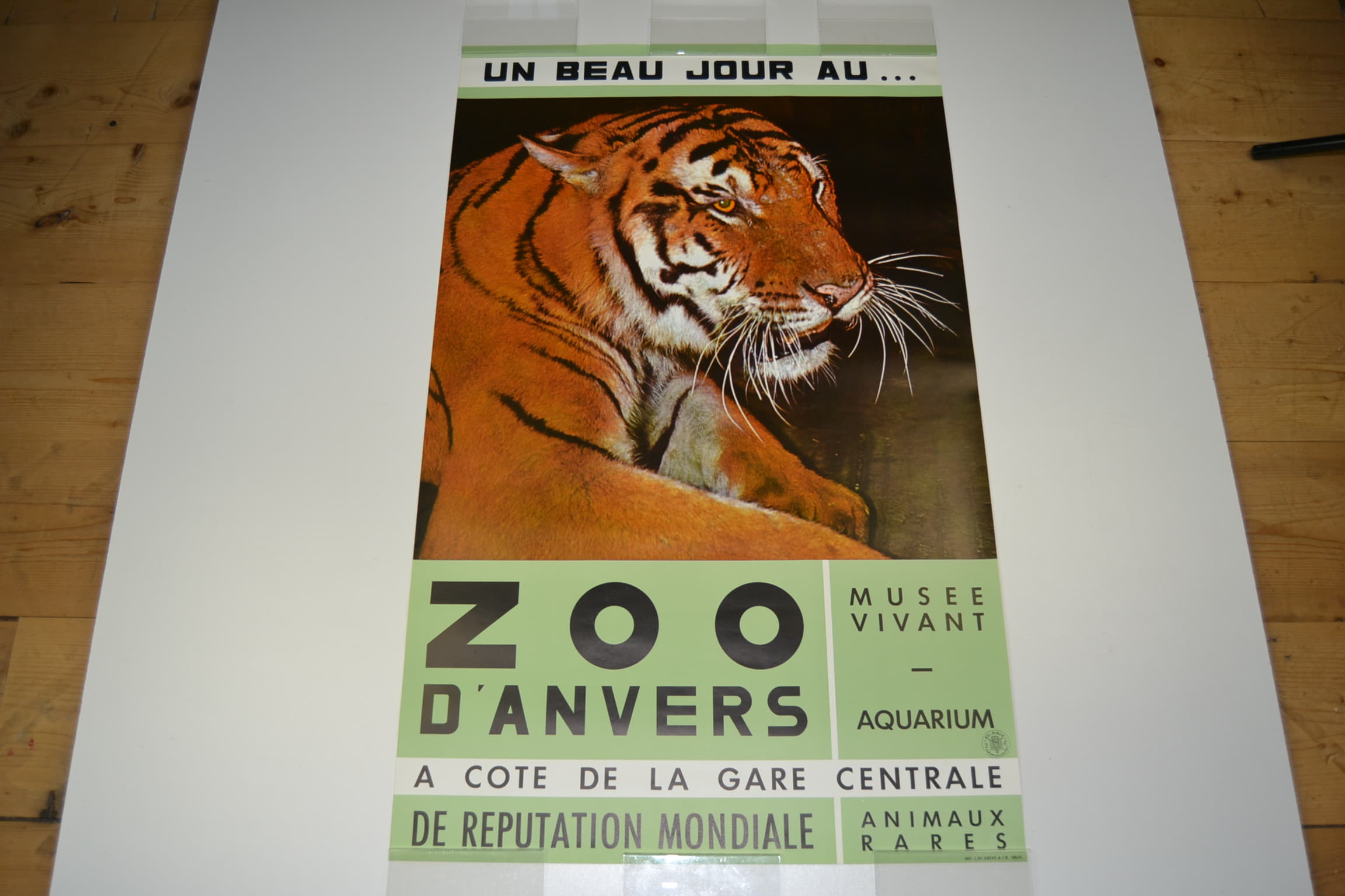 Mid 20th Century Poster Zoo Of Antwerp With A Tiger Animal Retro Station
