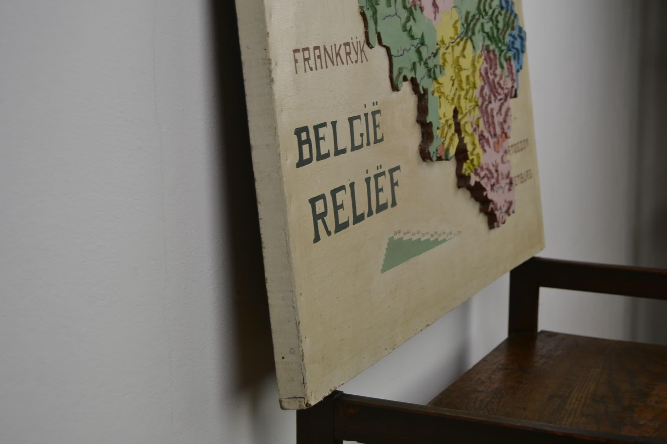 Wooden Relief Map Belgium 1950s Retro Station